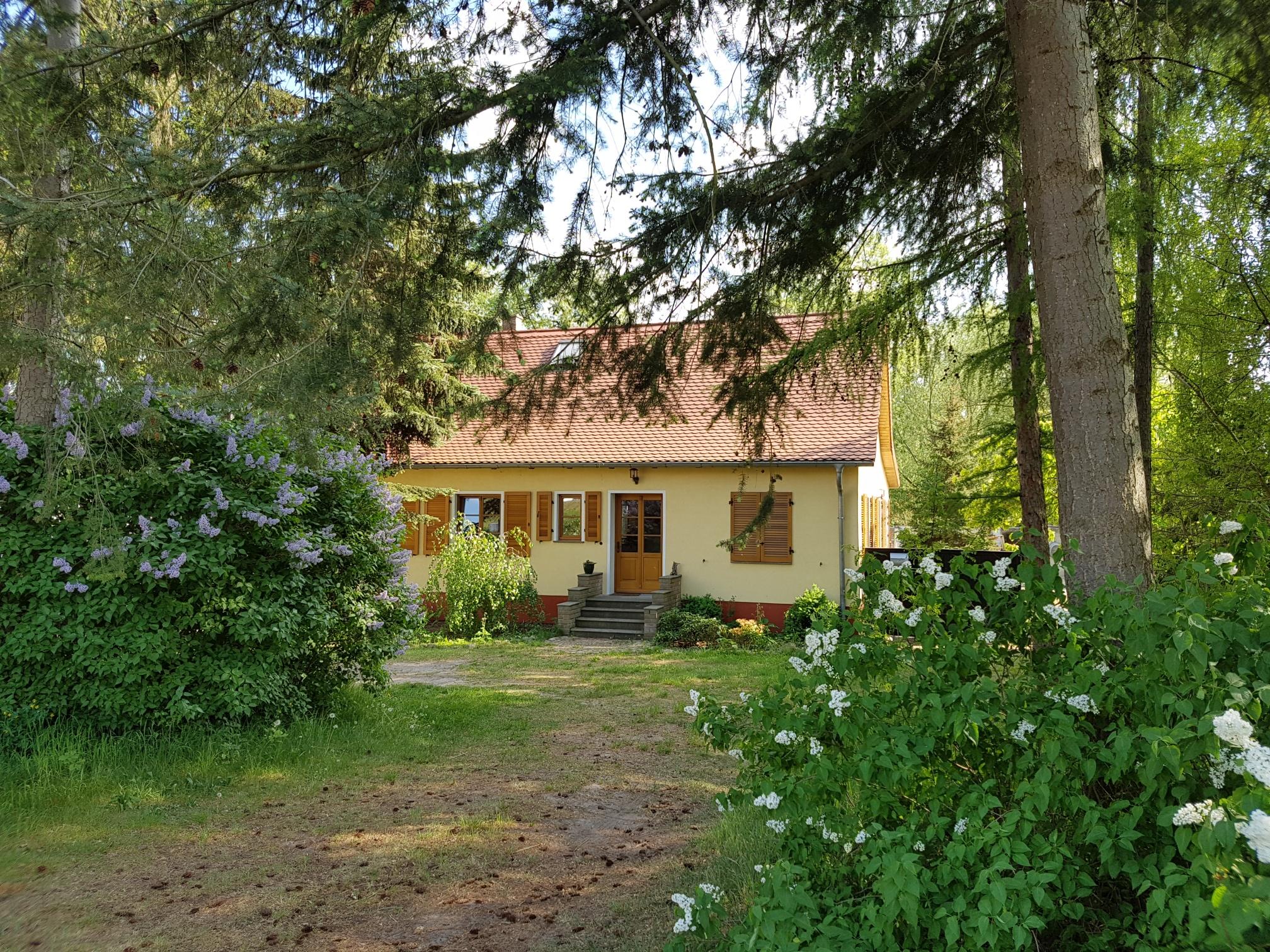 Das Ferienhaus Milow im Grünen