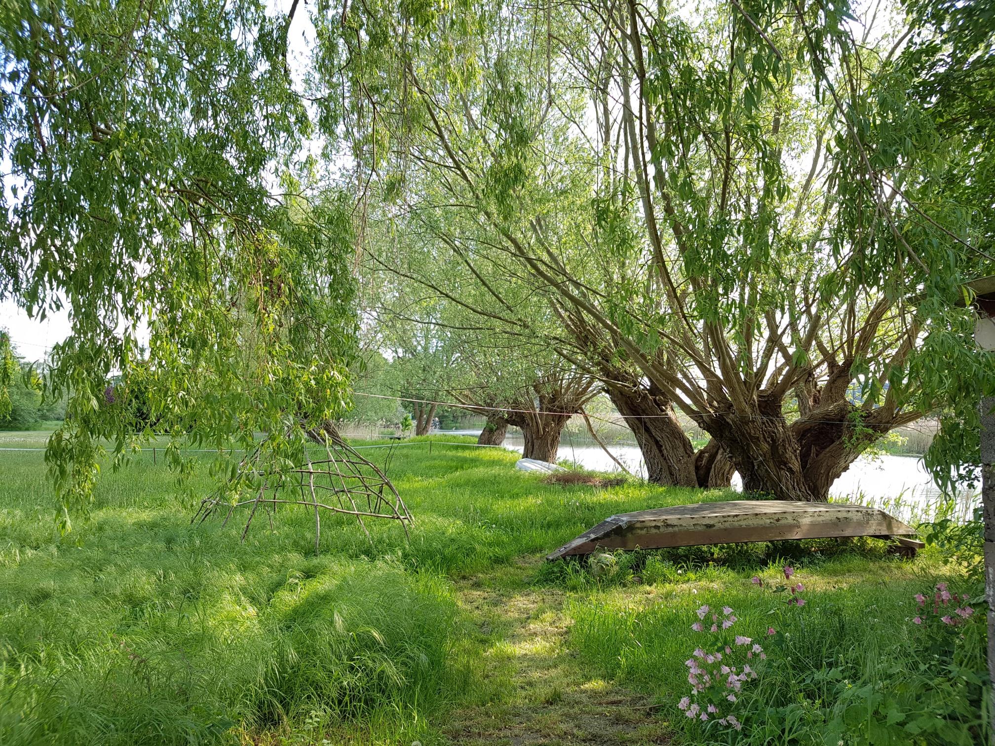 Blick auf die Idylle hinter dem Ferienhaus Milow